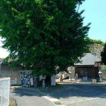 六郷極楽寺(神野々七墓)