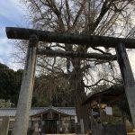Nyusakado Shrine